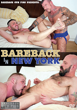 Bareback In New York
