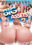 Big Assets 3