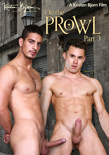 On The Prowl Part 3 cover