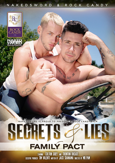 Secrets And Lies: Family Pact cover