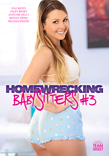 Homewrecking Babysitters 3 cover