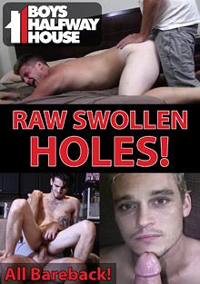 Boys Halfway House: Raw Swollen Holes