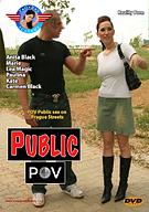 Public POV