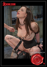 The Training Of Casey Calvert - Day 3