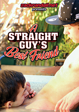 A Straight Guy's Best Friend