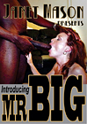 Introducing Mr. Big