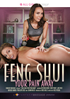 Feng Shui Your Pain Away