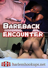 Bareback Encounter