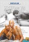 StreetCam 301