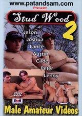 Stud Wood 2
