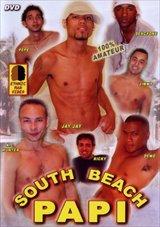 South Beach Papi