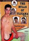 The Bulls Of Tijuana
