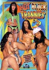 Hot Black Trannies  2