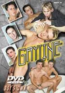Gayline
