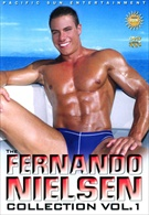 The Fernando Nielsen Collection: Vol 1