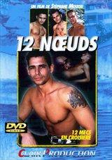 12 Noeuds