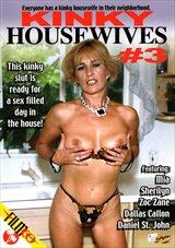Kinky Housewives 3
