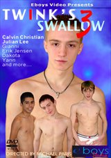 Twink's Swallow 3