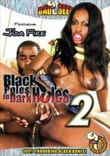 Black Poles In Dark Holes 2