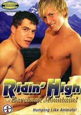 Ridin' High On Bareback Mountain