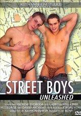Street Boys Unleashed