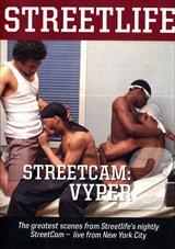 StreetCam: Viper 2