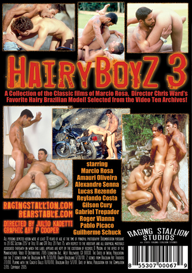 Hairy Boyz 03 Cover Back