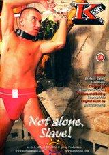 Not Alone Slave
