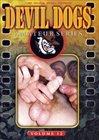 Devil Dogs 12
