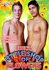 Erec's Little Shop Of Flowers