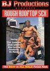 Rough Rooftop Sex