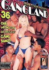 Gangland 36