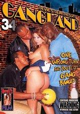 Gangland 34