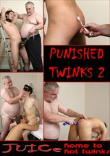 Punished Twinks 2