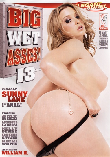 Big Wet Asses 13 cover