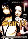 Scar 13