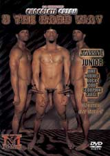 3 The Hard Way Xvideo gay
