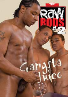 Raw Rods 2 cover
