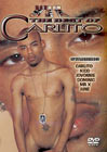The Best Of Carlito