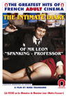 The Intimate Diary Of Mr Leon: Spanking Professor- French