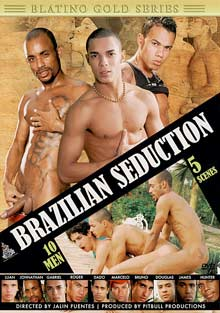 Brazilian Seduction cover