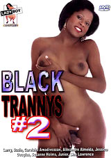 Adult Movies presents Black Trannys 2