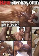 RawStrokes.com 3: Raw Pleasures