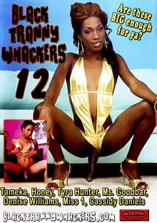 Black Tranny Whackers 12