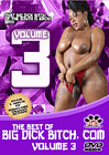 The Best Of Big Dick Bitch 3