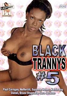 Black Trannys 5