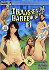 Transsexual Barebackin' It 14