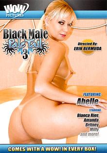 Black Male Pale Tail 3