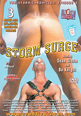 The Storm Chronicles 3: Storm Surge