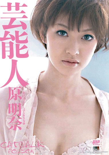 Adult Movies presents Catwalk Poison 21: Akina Hara